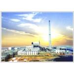 河南中州热电站
